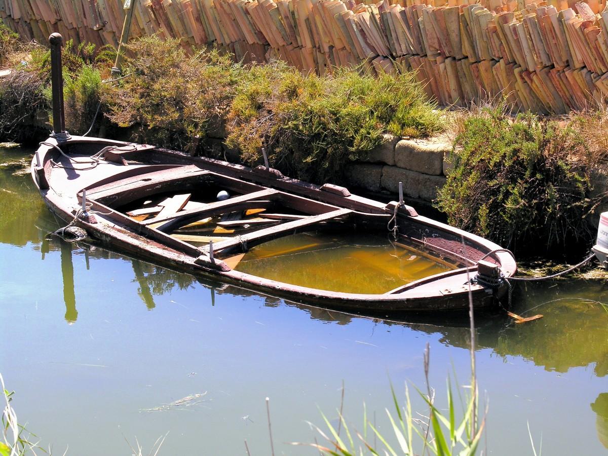практика название лодок картинки решение только