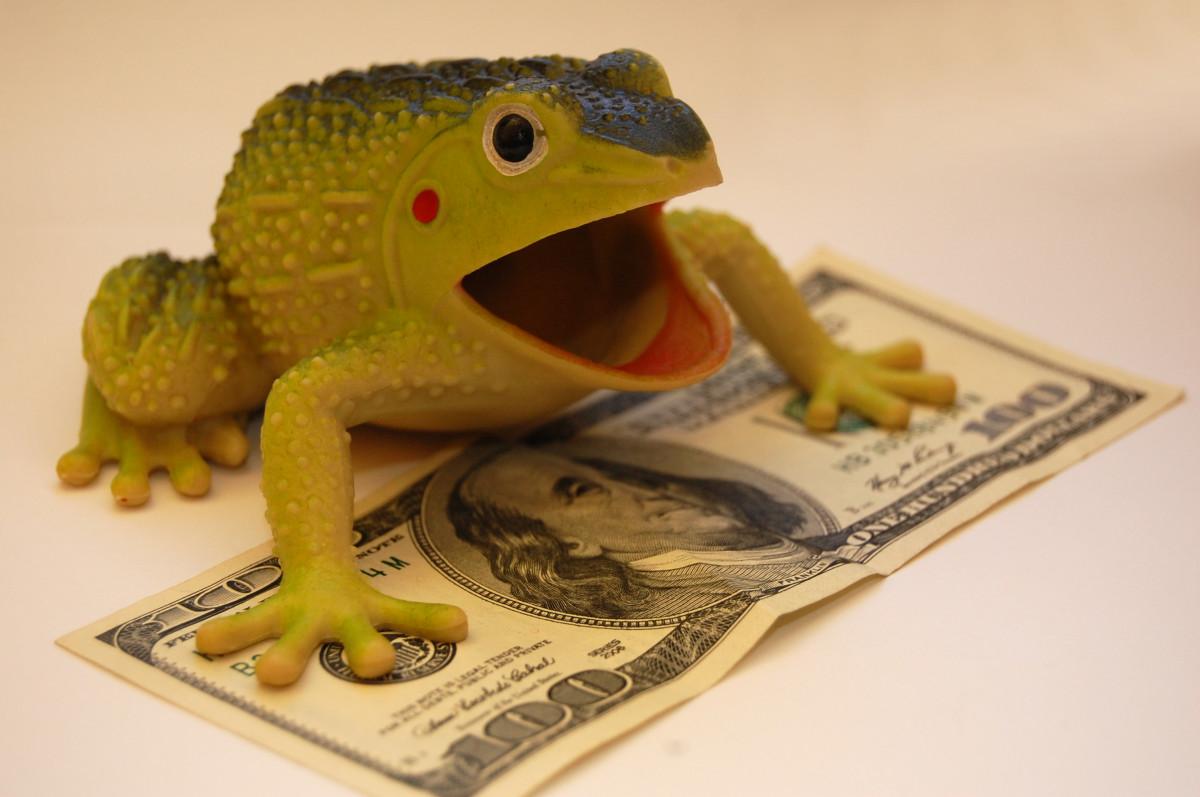 カエル 財政 富 資本 コイン 紙幣 金銭賞 利益 符号 バックグラウンド 図 お金 おもちゃ 迷信 繁栄 ヒキガエル 現金 ドル 百ドル マーケティング 広告 動物相 両生類 爬虫類 ランディダエ スケーリングされた爬虫類