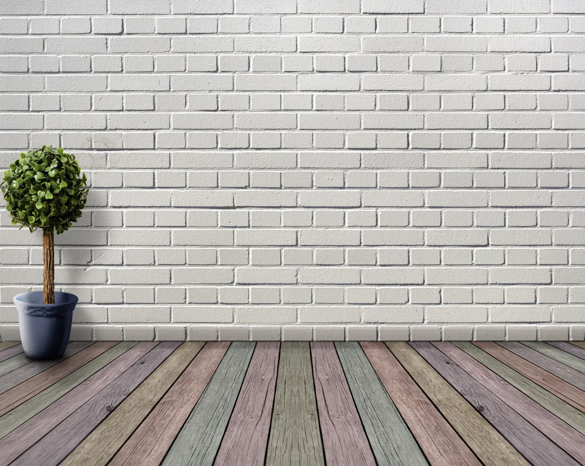 Kostenlose Foto : Platz, Leer, Holzboden, Pflanze, Blumentopf, Buchsbaum,  Deco, Zimmerpflanze, Weiß, Innere, Holzbretter, Farbe, Mauer, Zimmer,  Steinwand, ...