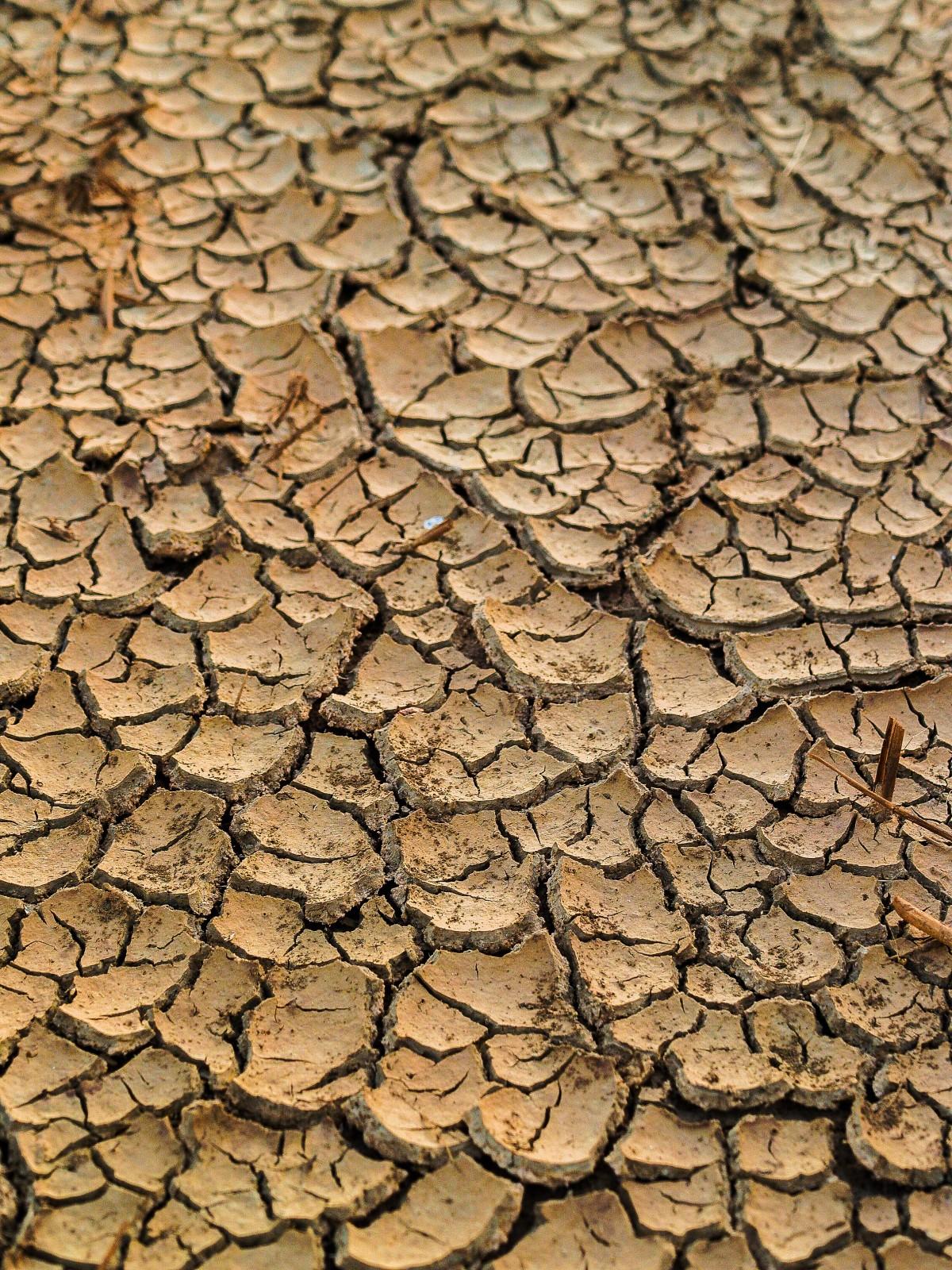 abstrait aride Toile de fond Contexte marron argile climat fermer fissure désert détail saleté sale sécheresse sec poussière Terre environnement érosion extrême sol Grunge chaleur chaud boue Naturel la nature modèle Playa sol été surface texture Texturé fond d'écran échauffement