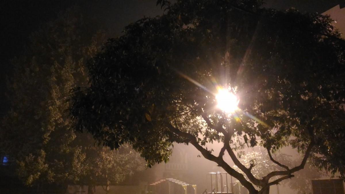 Free Images Brain Nature Rays Hope Beauty Dark