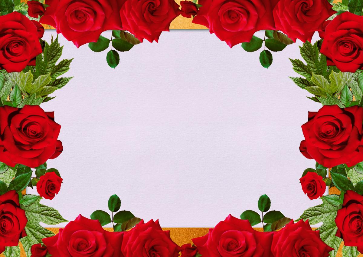 Gambar : bunga-bunga, bingkai, Desain, ruang teks ...