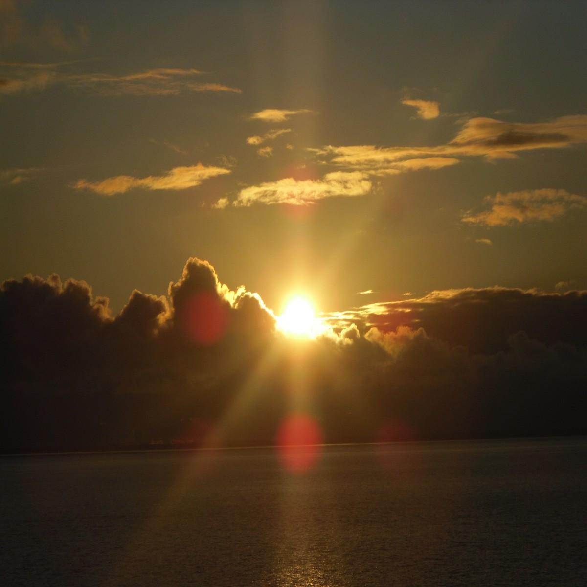 медвежата открытки восход солнца познакомитесь