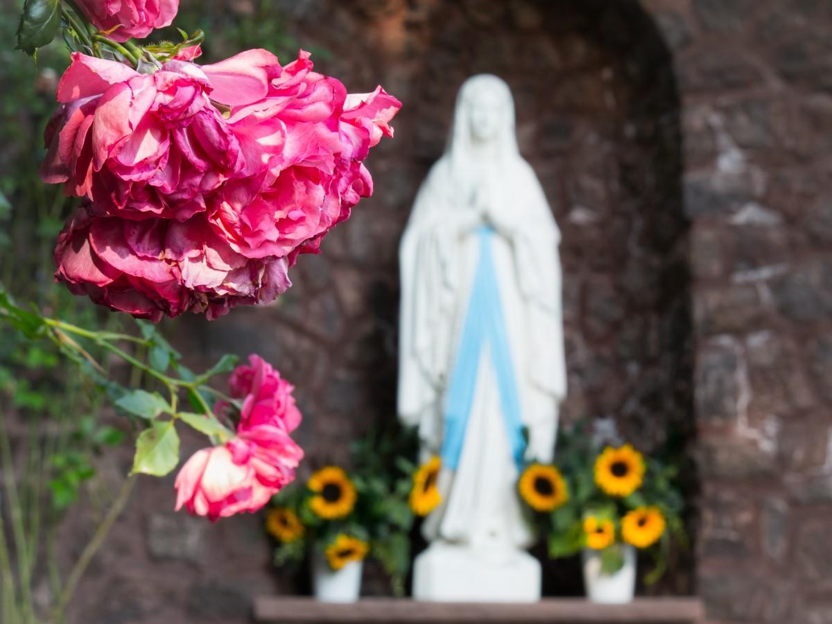 """a flowering of faith christianity and Text, faith, jesus, christianity, holy, gospel, document, spirituality art, text, faith, jesus, christianity open bible, flowering."