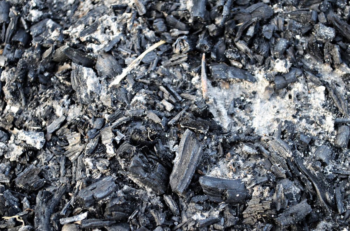 Images gratuites arbre roche texture asphalte feu sol bois de chauffage cendre chaleur - Arbre fruitier comme bois de chauffage ...