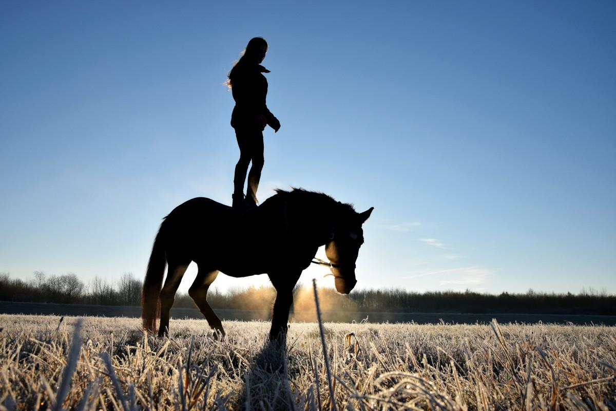 vapaa vaalea ratsastaa