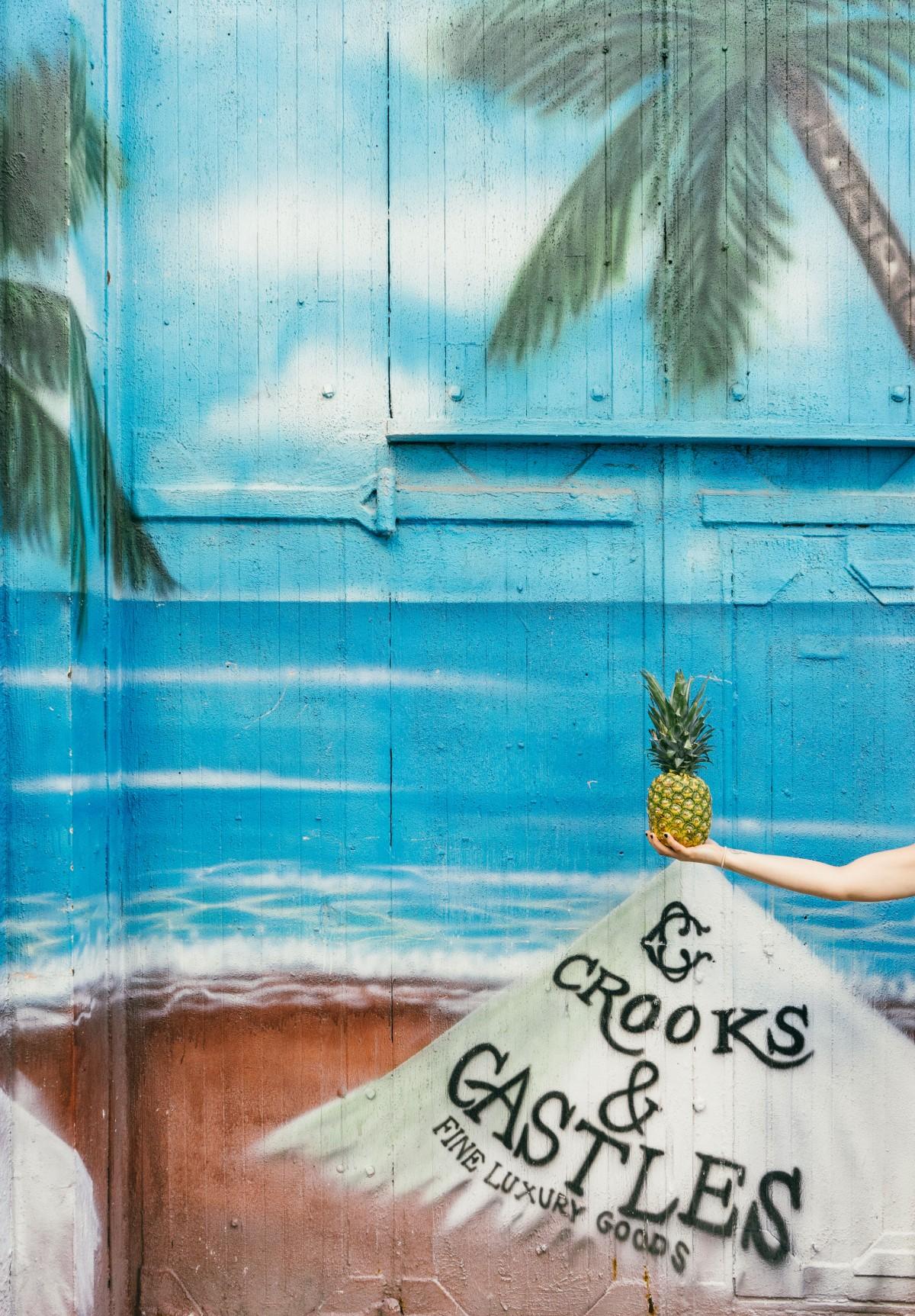 Images Gratuites Bois Fruit Mur Couleur Peindre Bleu
