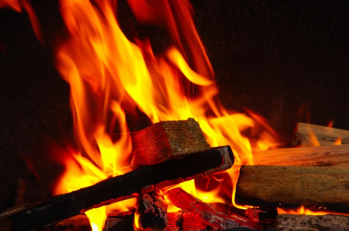 Fotos gratis : fuego, hoguera, parrilla, Un brote de, la