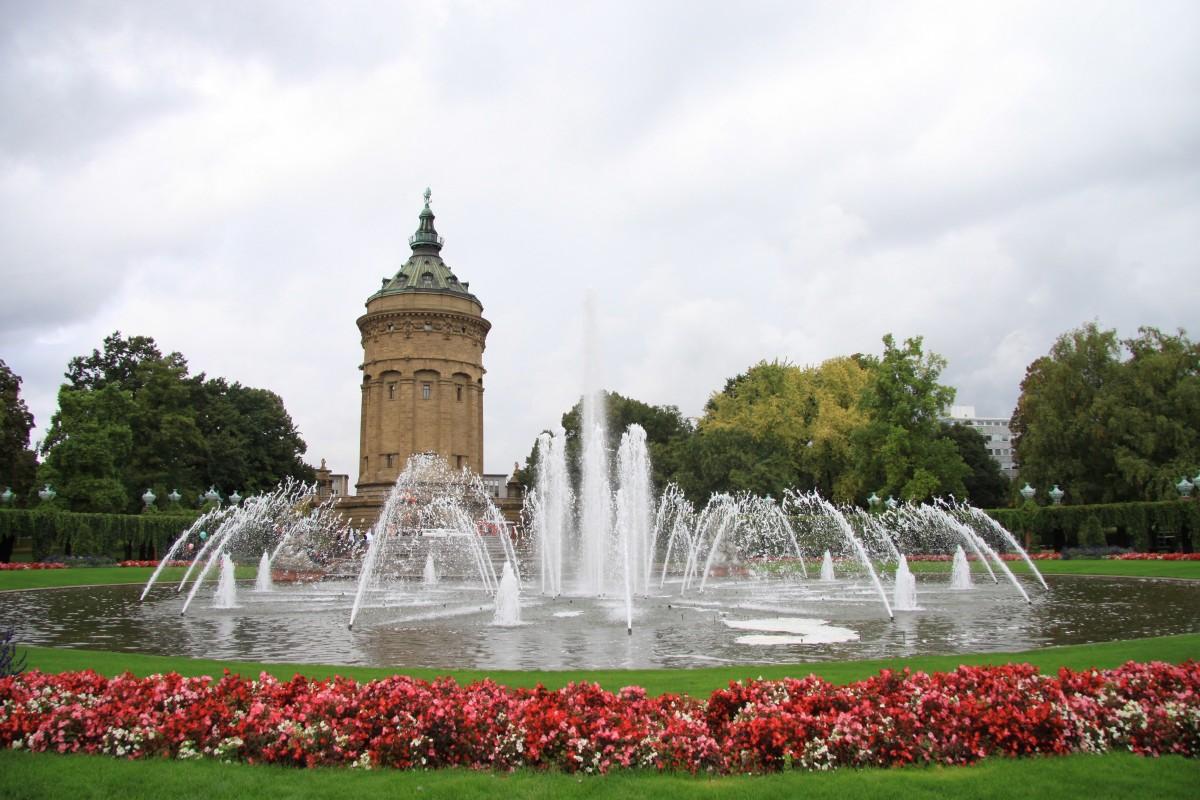 fleur château palais monument statue parc point de repère jardin tourisme fleurs château d'eau Mémorial Fontaine Allemagne Place de ville caractéristique de l'eau Mannheim zone verte