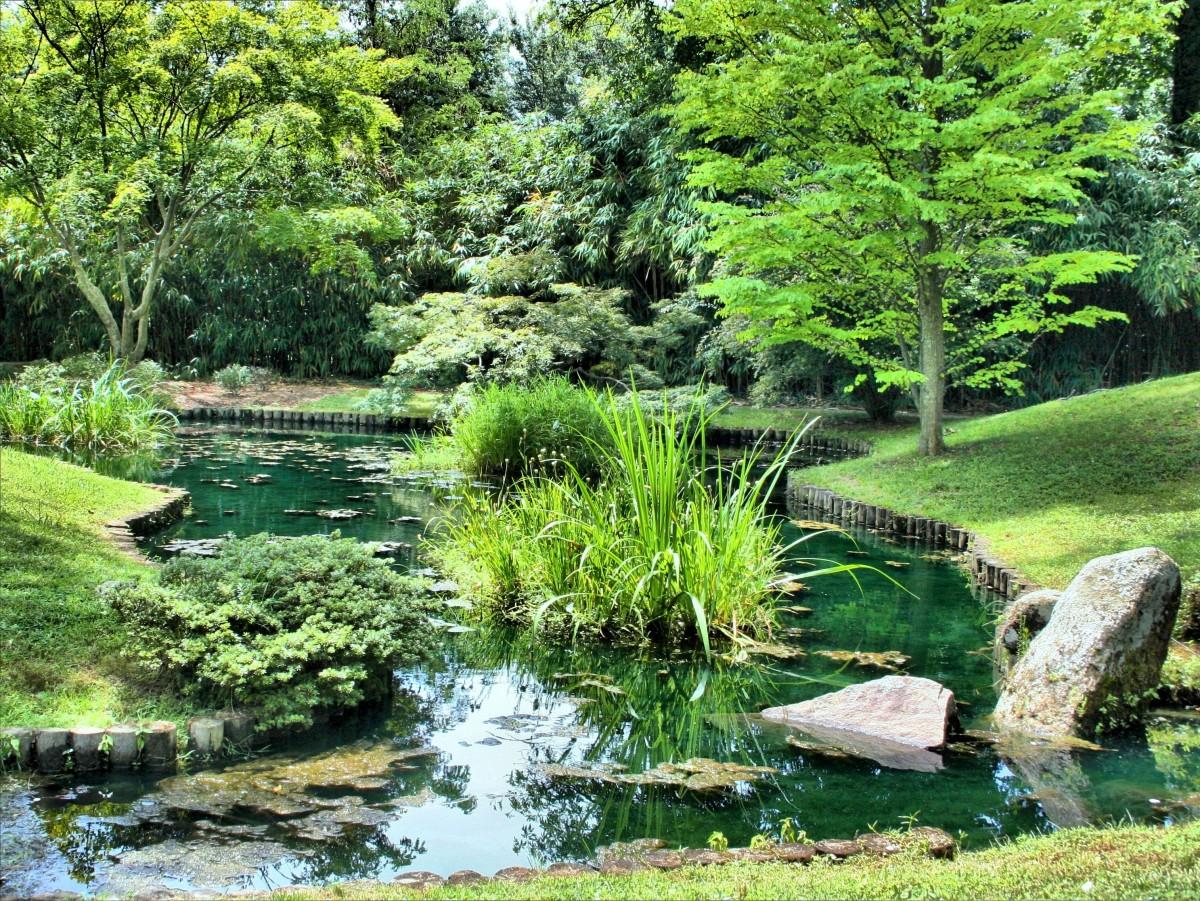 piscine pour jardin