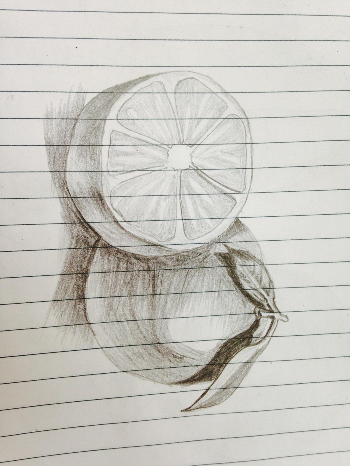 Gambar Karya Seni Sketsa Ilustrasi Tangan Gambar Pensil