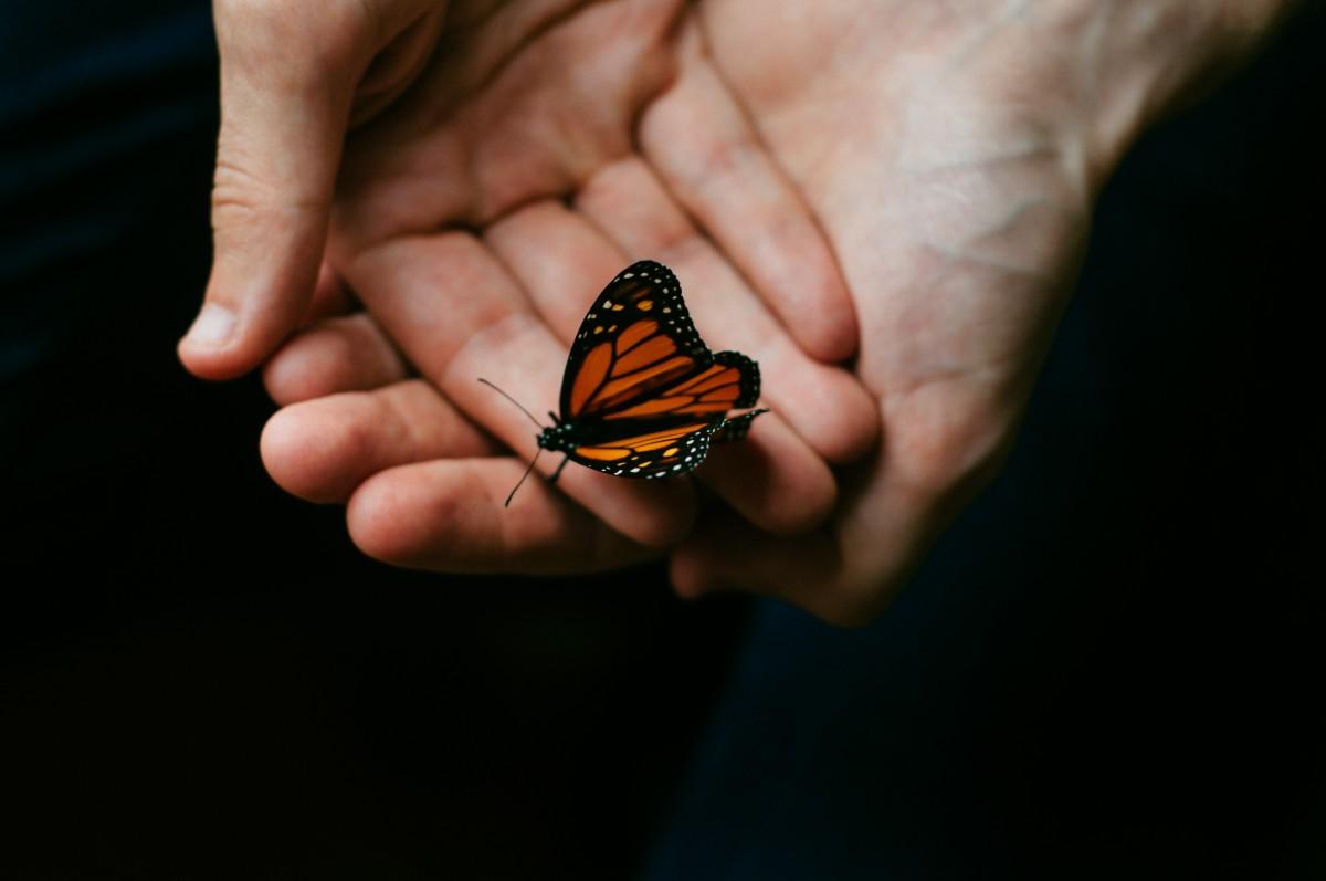 Брюнетки надписями, бабочки в руках картинки