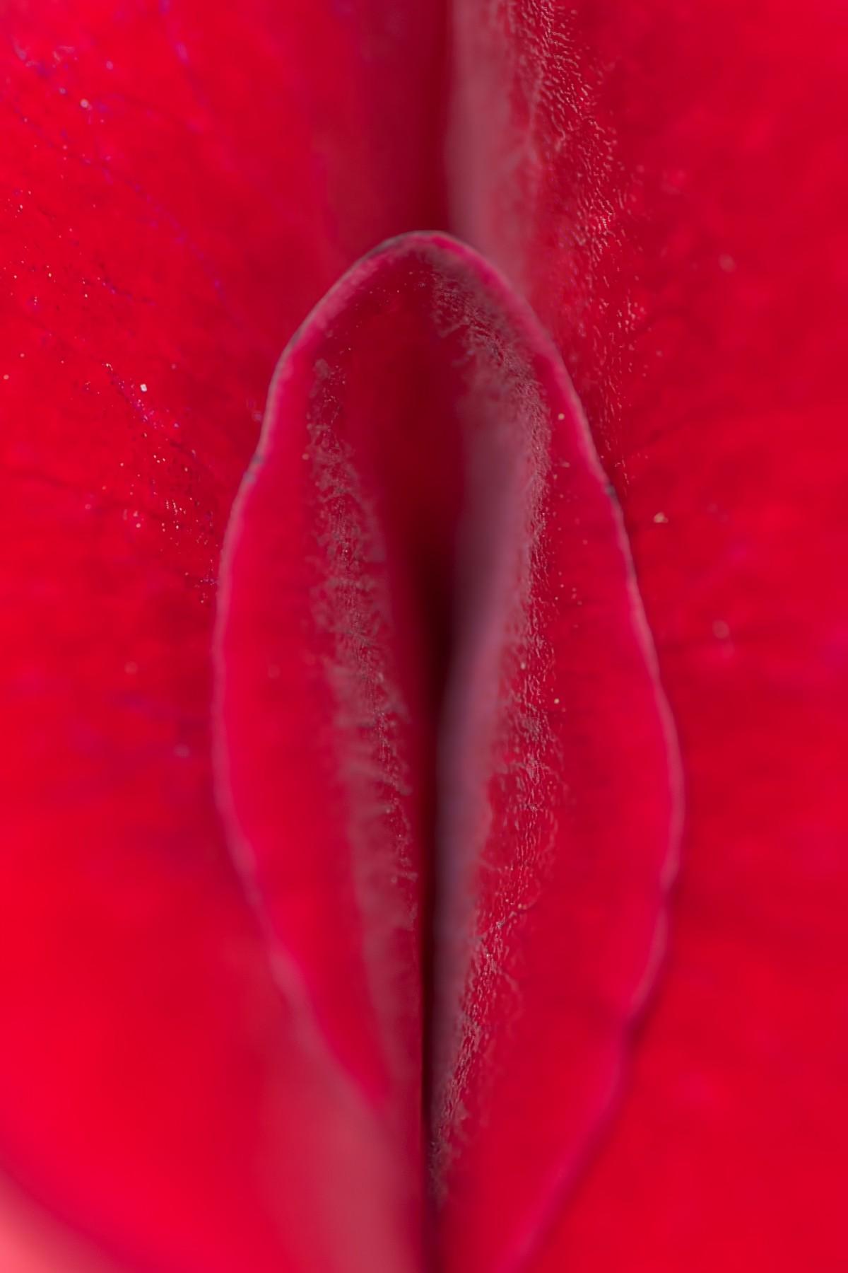 Киски крупным размером, секс с азиатки и стариком порно