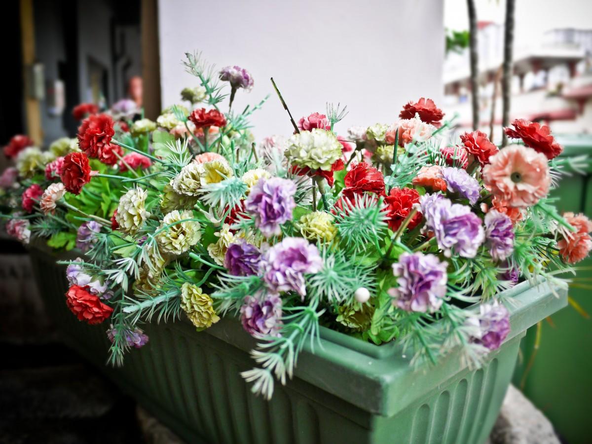 kostenlose foto blume flora kunst floristik verkauf bl hende pflanze blumenstrau. Black Bedroom Furniture Sets. Home Design Ideas