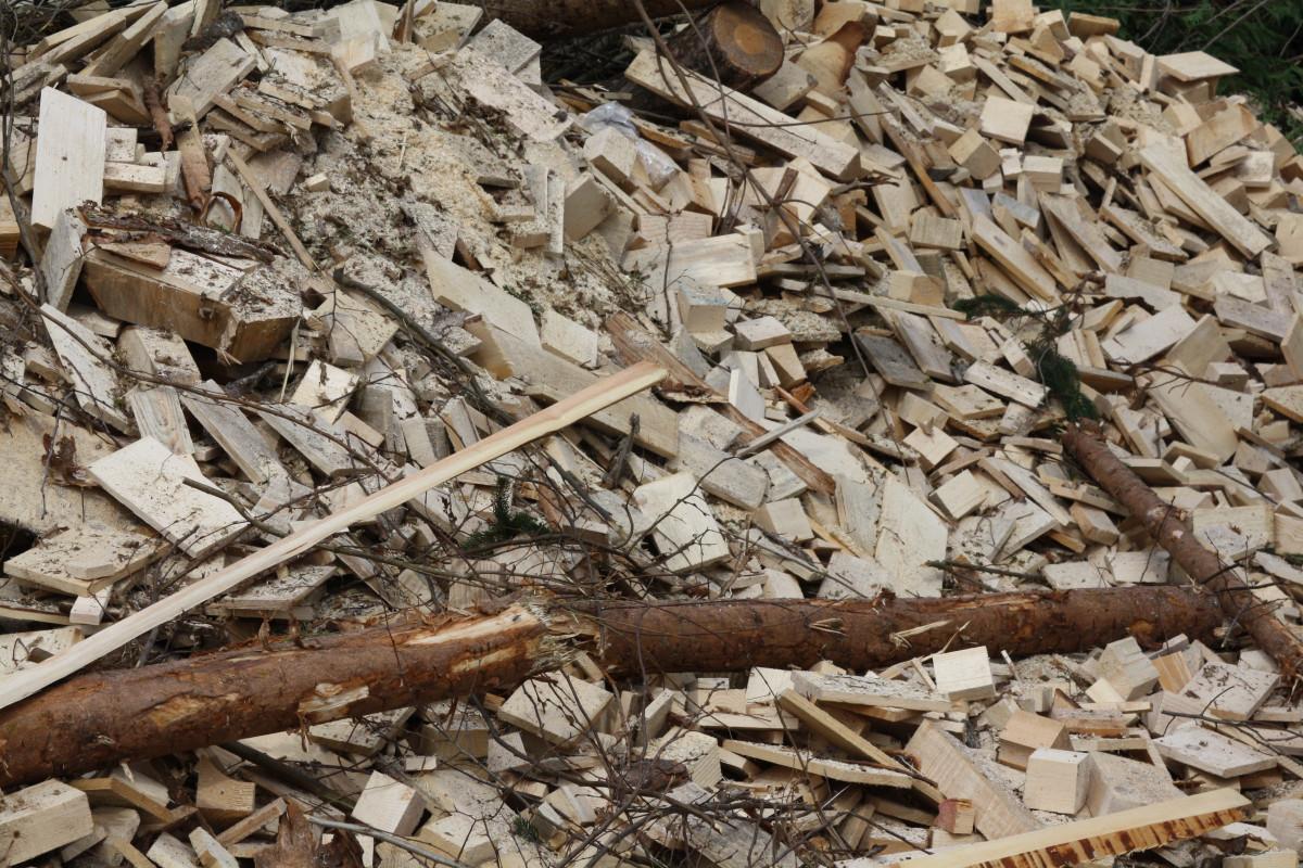 Bois - Biomasse - Énergie renouvelable - Combustible - SchoolMouv - Géographie - CM1