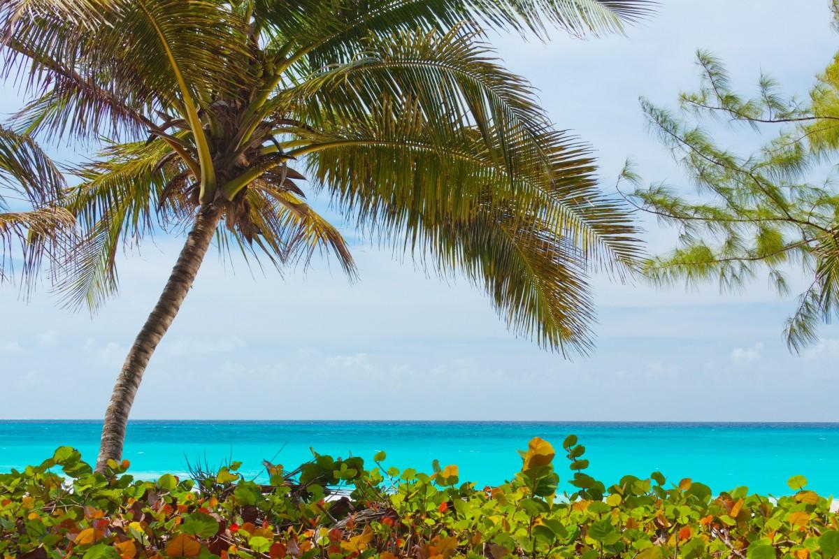 ocean landscapes beach paradise - photo #17