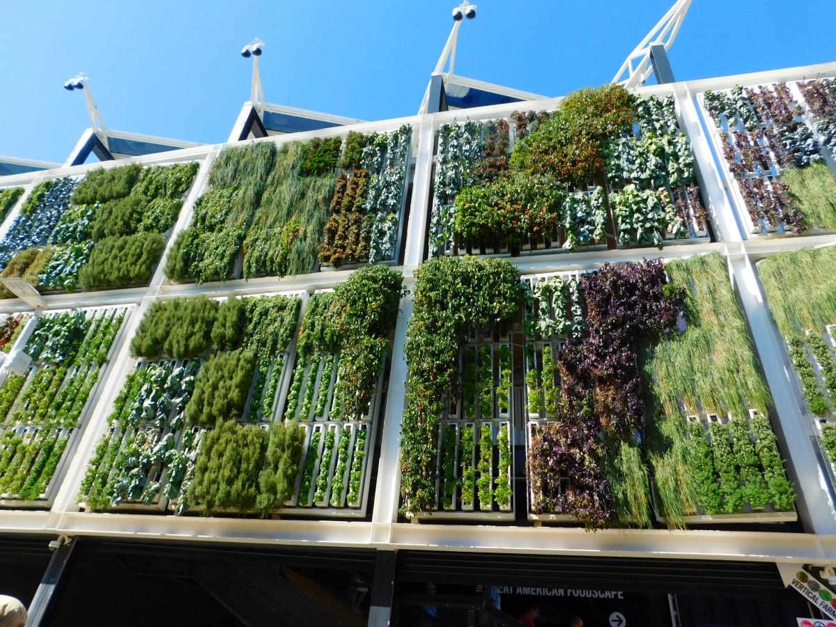 Budú záhrady a polia budúcnosti vyzerať takto?