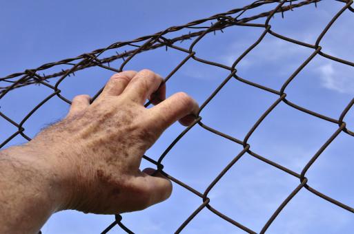 fil électrique pour clôture électrique