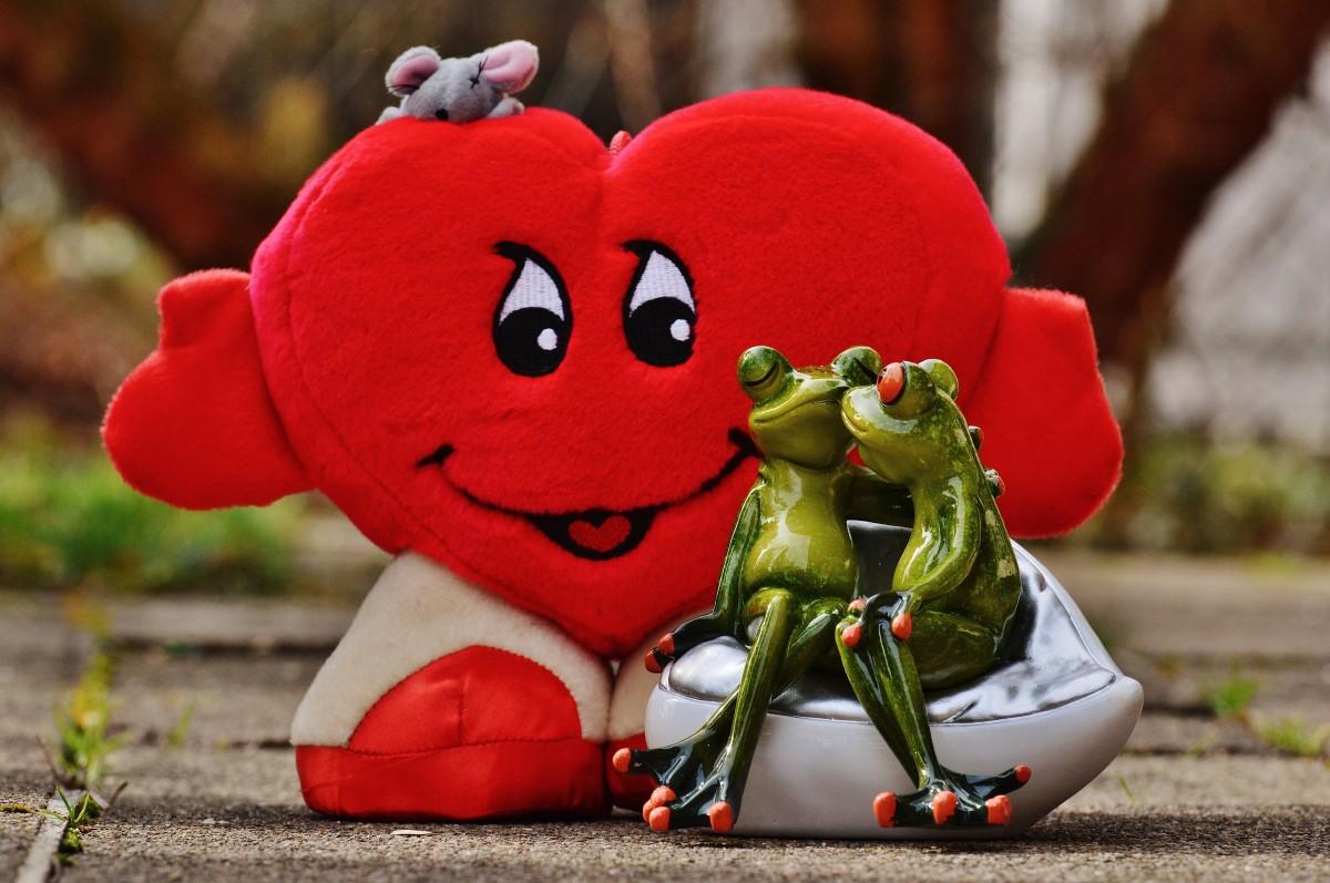 kostenlose foto : süß, blume, niedlich, herz, rot, kuss