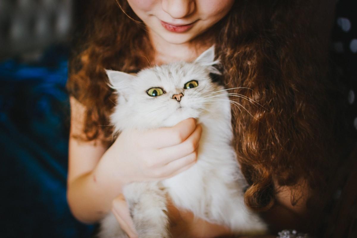 Kočička od dívek