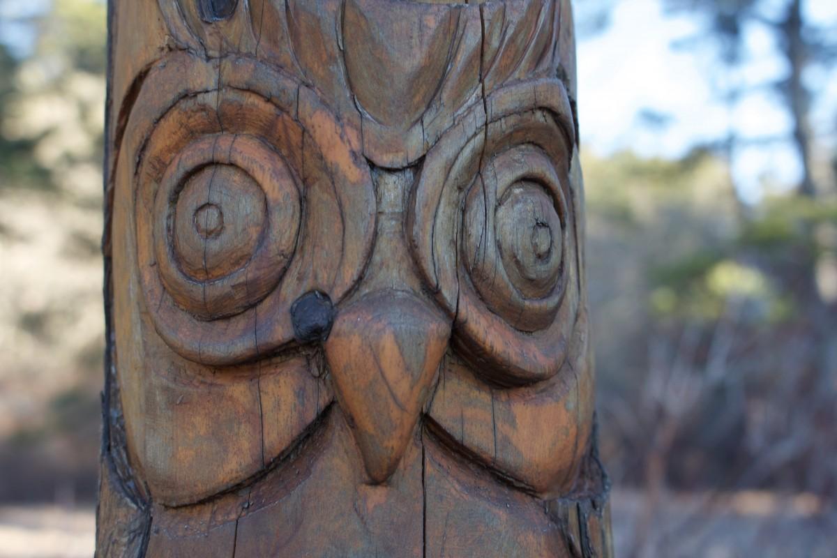 Art Indigene Decoration Bois