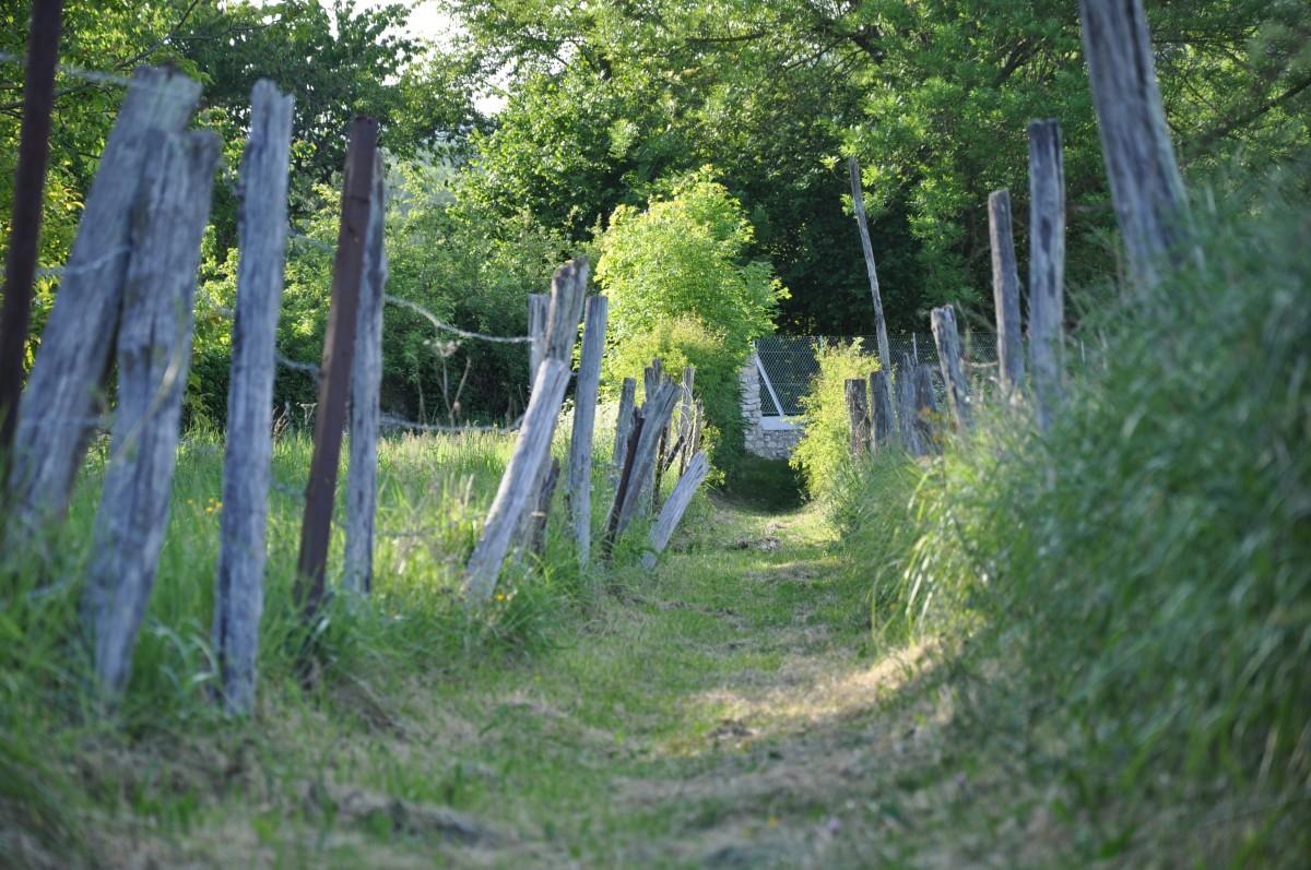 bois de jardin