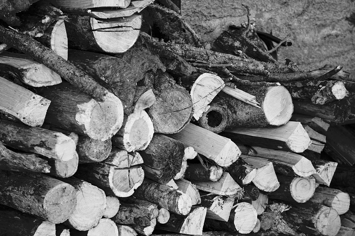Gratis afbeeldingen boom natuur hout veld dak romp schuur schors hut frankrijk kop - Badkamer natuur hout ...