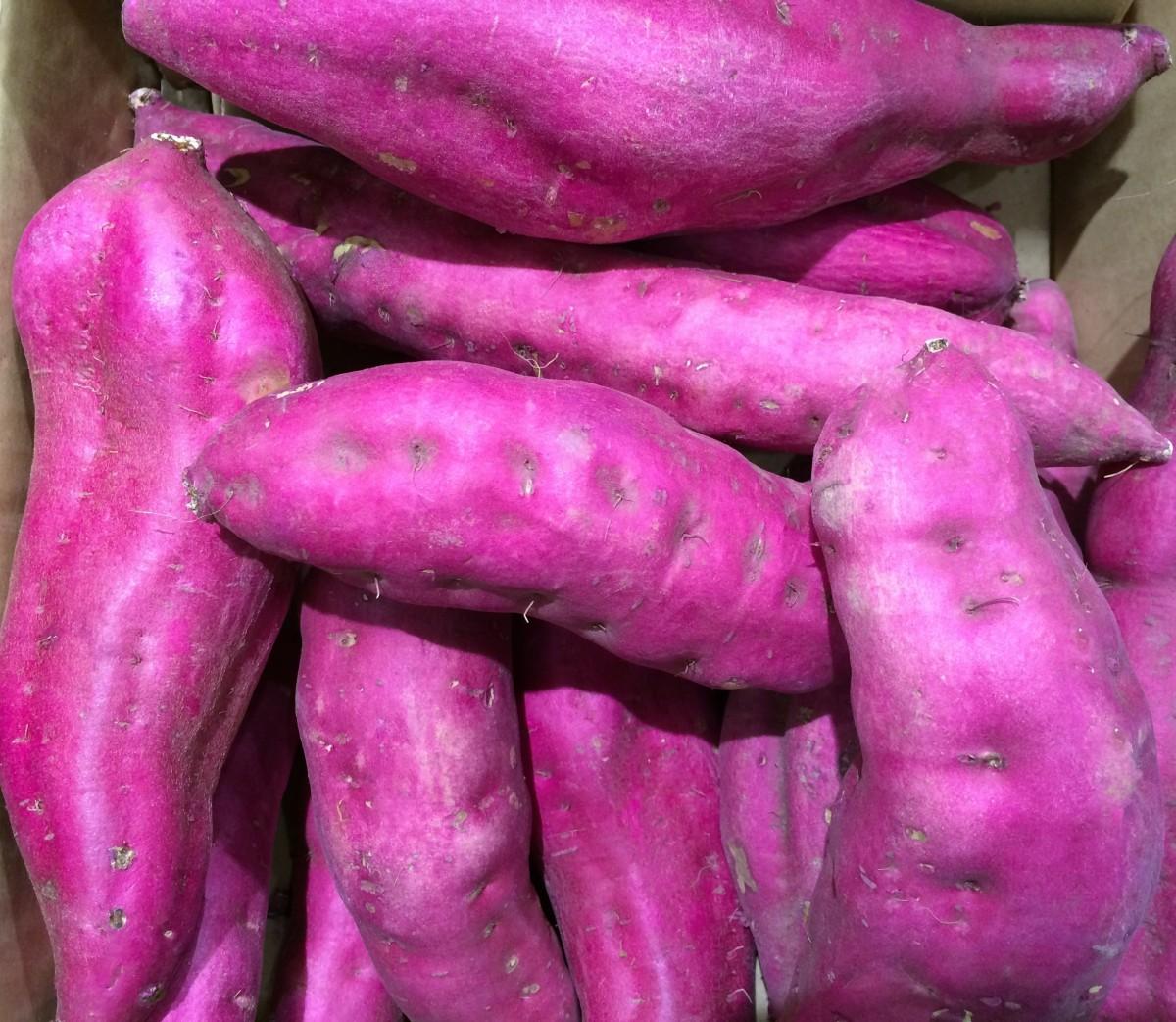 El ñame Purpura promueve la salud intestinal