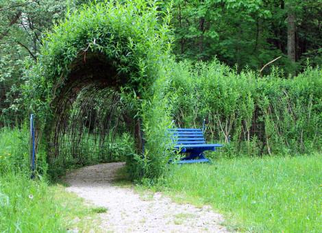 Gambar Lampu Kanopi  gambar pohon alam hutan arsitektur menanam jembatan
