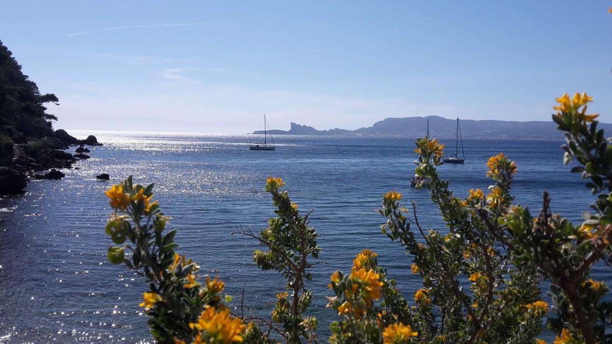 plage paysage mer côte eau océan horizon Montagne Matin rive fleur Lac crépuscule France baie plan d'eau Côte d'Azur Mer méditerranéenne