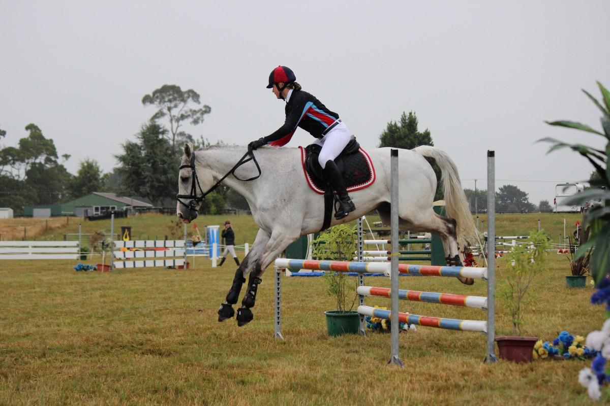 hình ảnh : Môn thể thao, Giải trí, Người lái, chỉ, Ngựa, con ngựa, Sư tử,  dap xe, thể thao mạo hiểm, Cưỡi ngựa, cuộc thi, các môn thể thao, Môn cưỡi