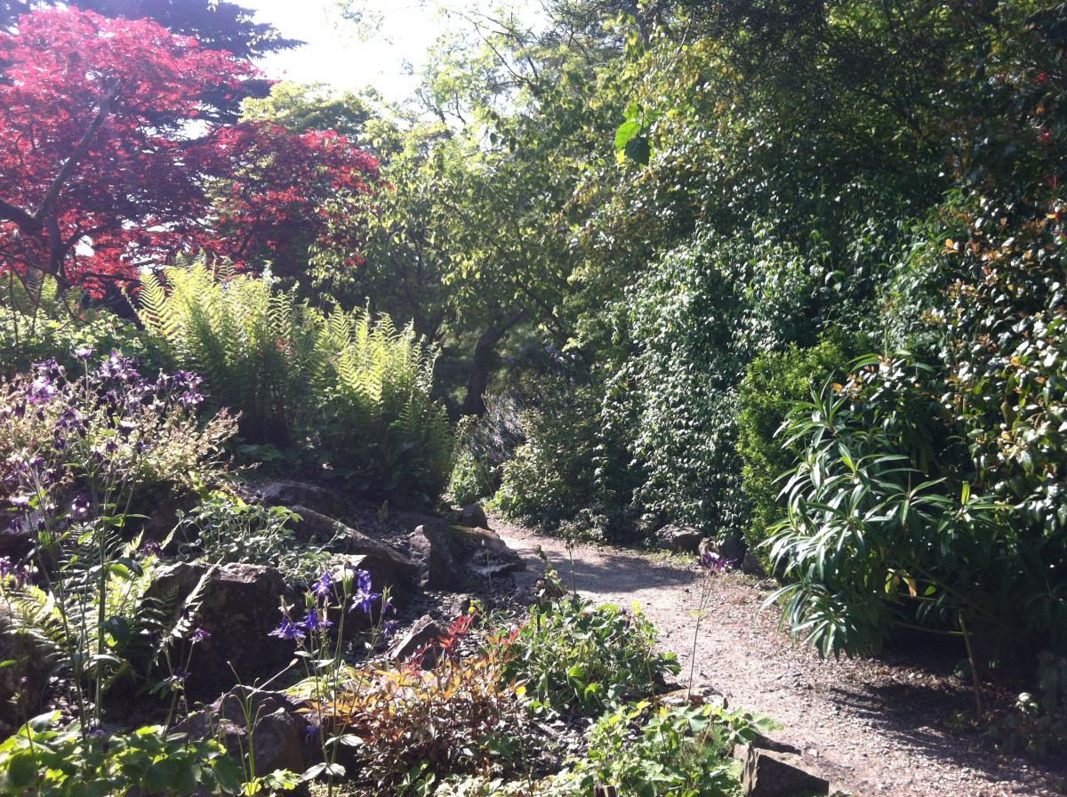 Букет, купить цветы и кустарники ботанический сад владивосток