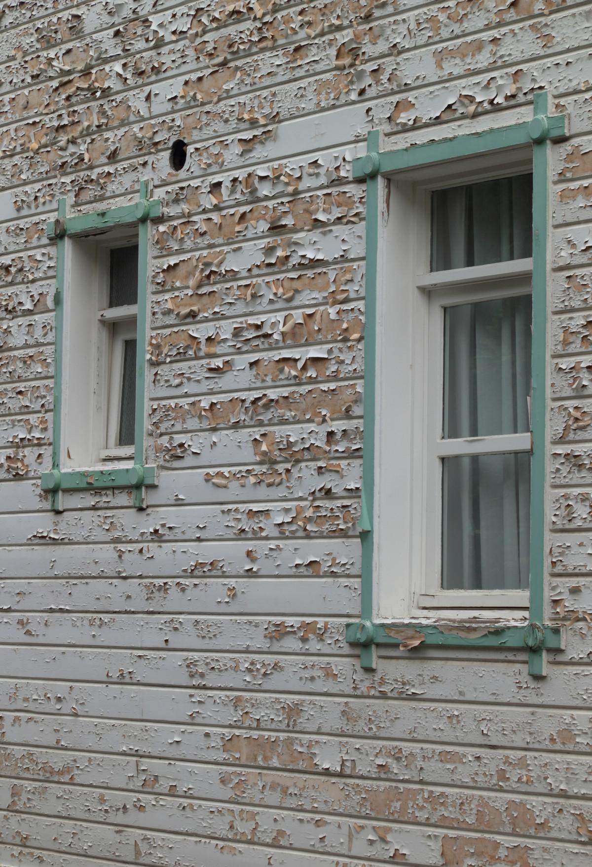 Kostenlose foto vogel holz haus fenster dach mauer for Haus fenster