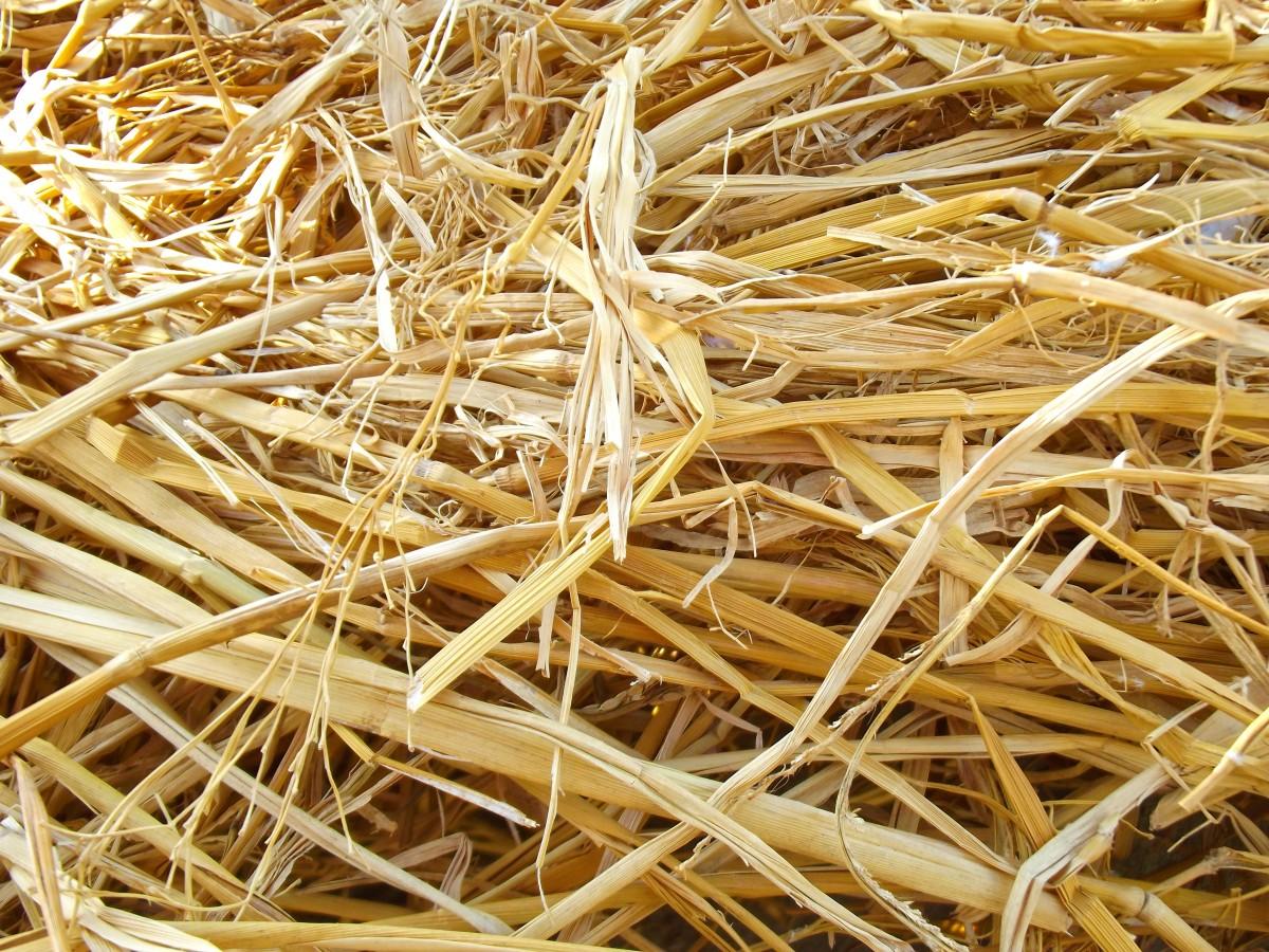 kostenlose foto natur gras ast pflanze holz heu muster lebensmittel produzieren ernte. Black Bedroom Furniture Sets. Home Design Ideas