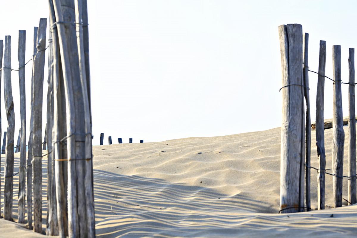 fil de clôture