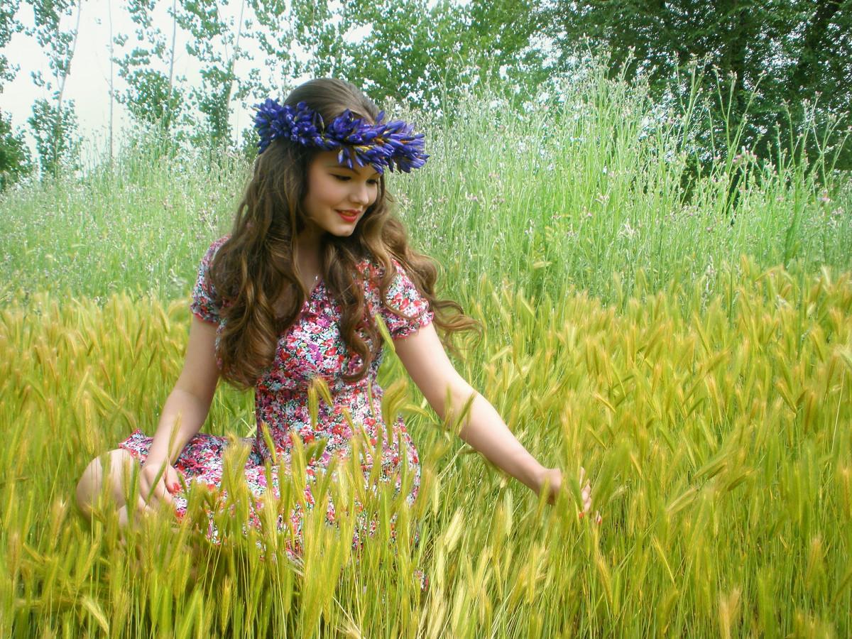 free images field meadow sunlight morning flower
