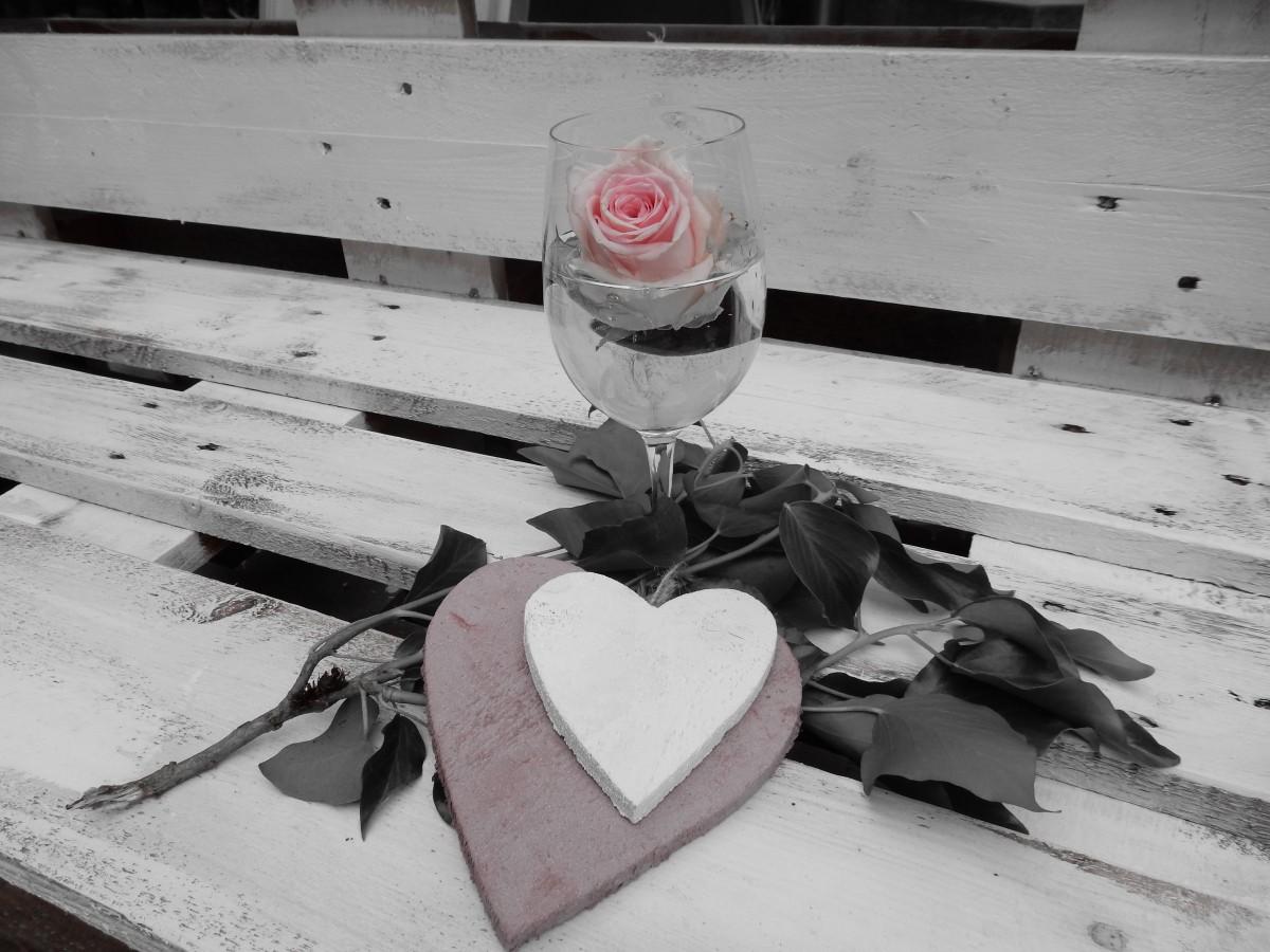 Hình ảnh Tuyết đen Và Trắng Gỗ Tường Yêu Bông Hồng