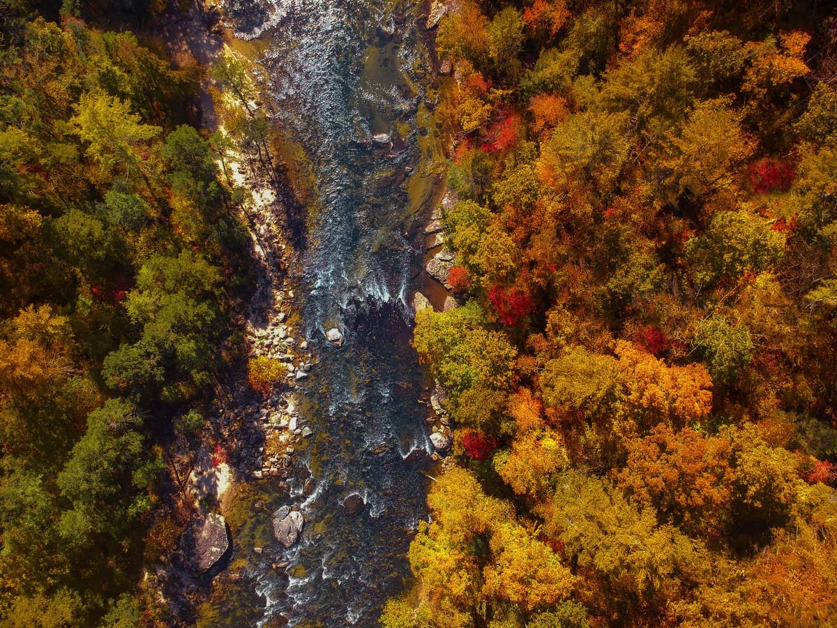 foto de Images Gratuites : Prise de vue aérienne, l'automne, Automne ...