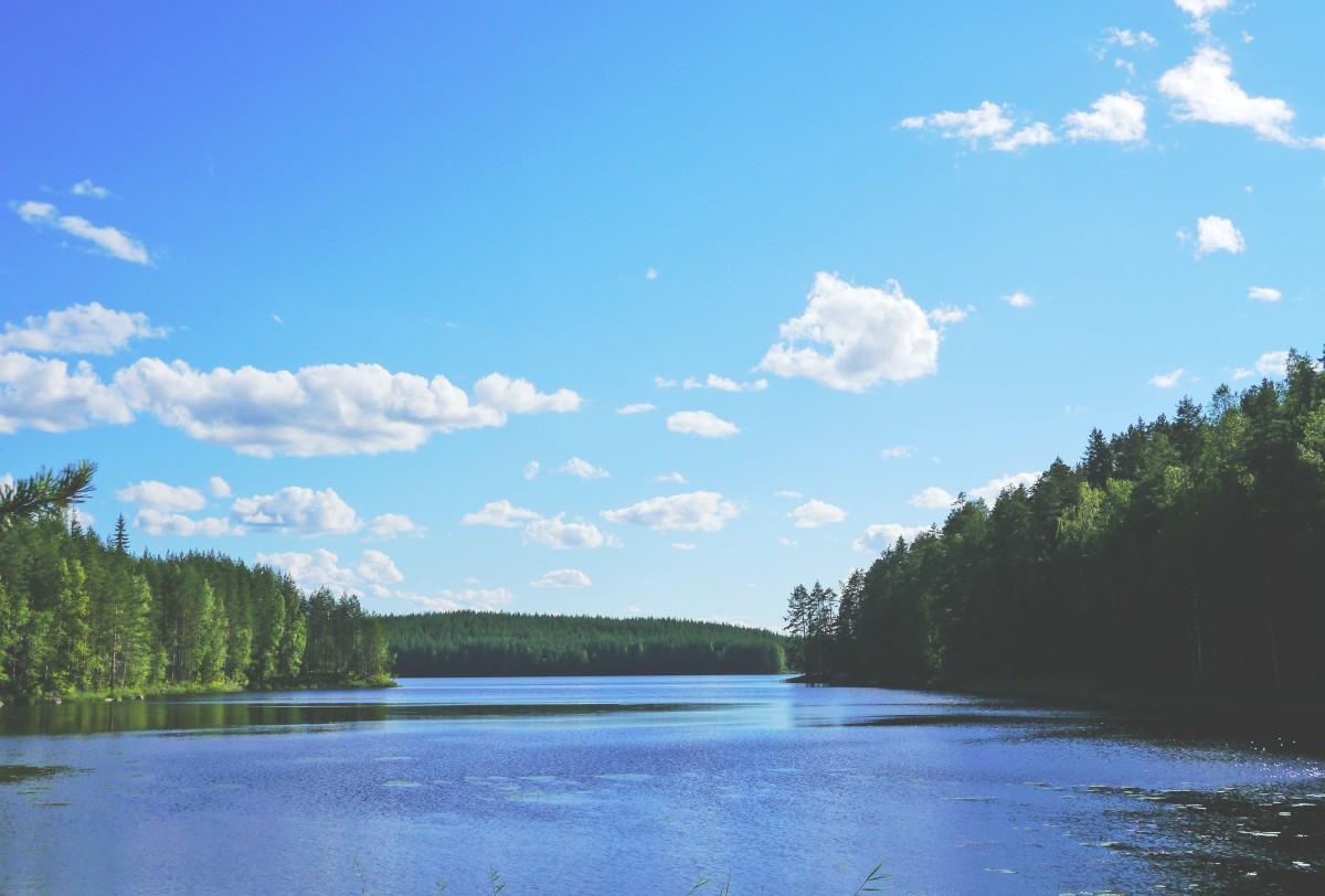 Finnish landscape (public domain image)
