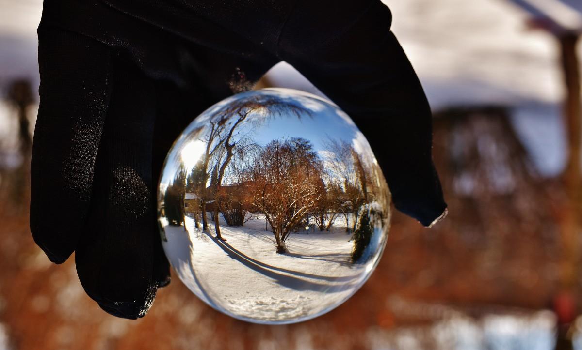 free images tree snow winter light night sunlight ice