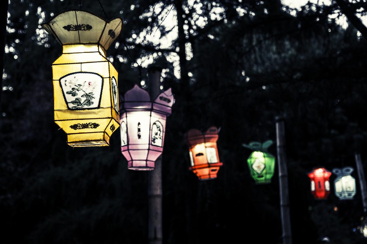 Decorazioni Con Lanterne Cinesi : Acquista cm lanterne di carta cinesi con luci a led multi