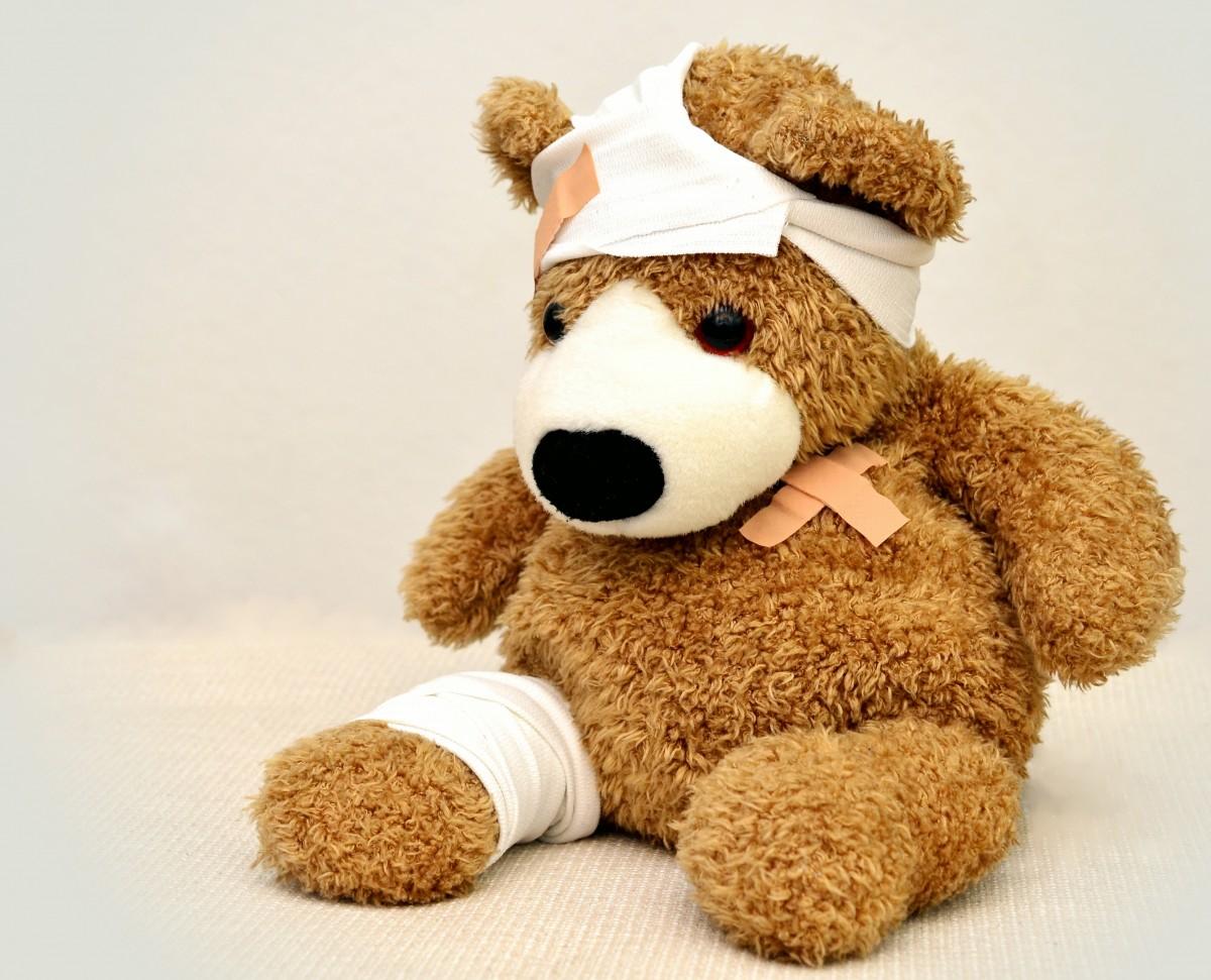 Plush Toys Product : Free images dog leg arm flowers teddy bear product