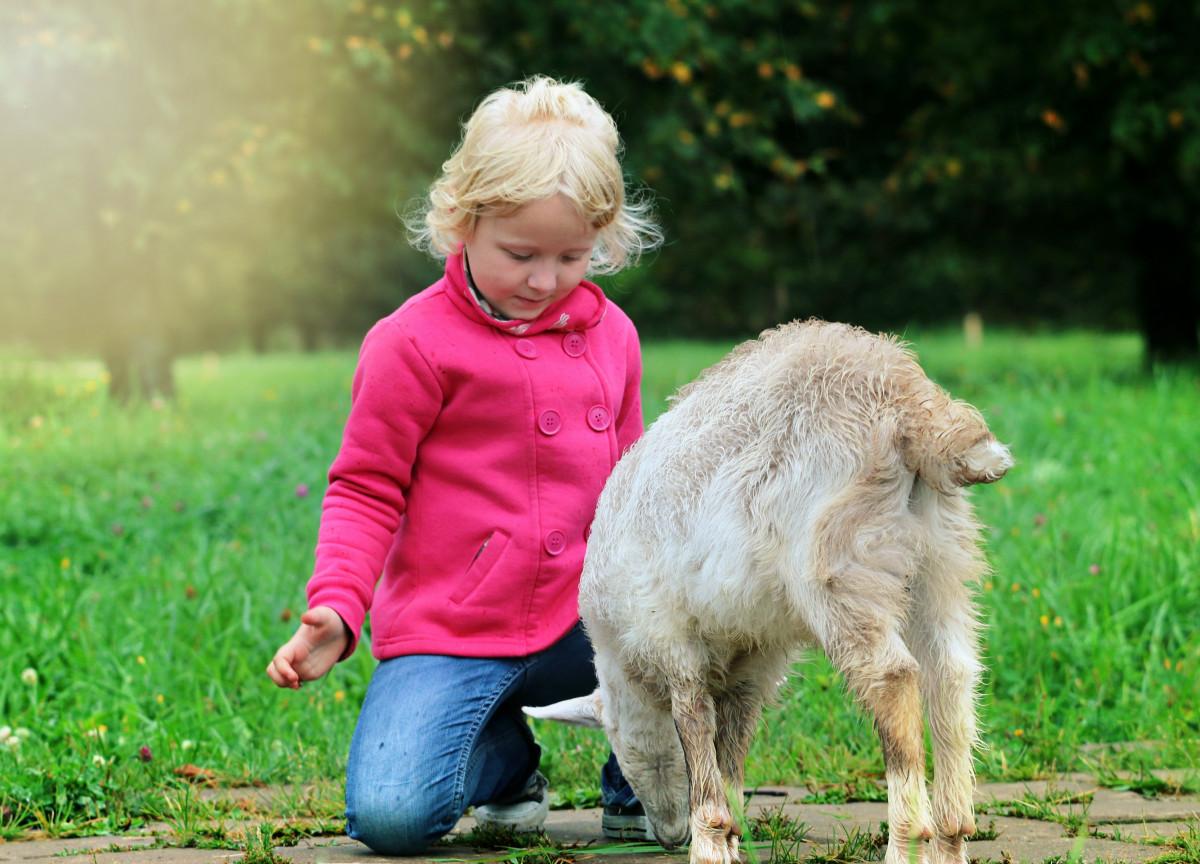 запечатлена картинки доброта и спокойствие сайт содержит