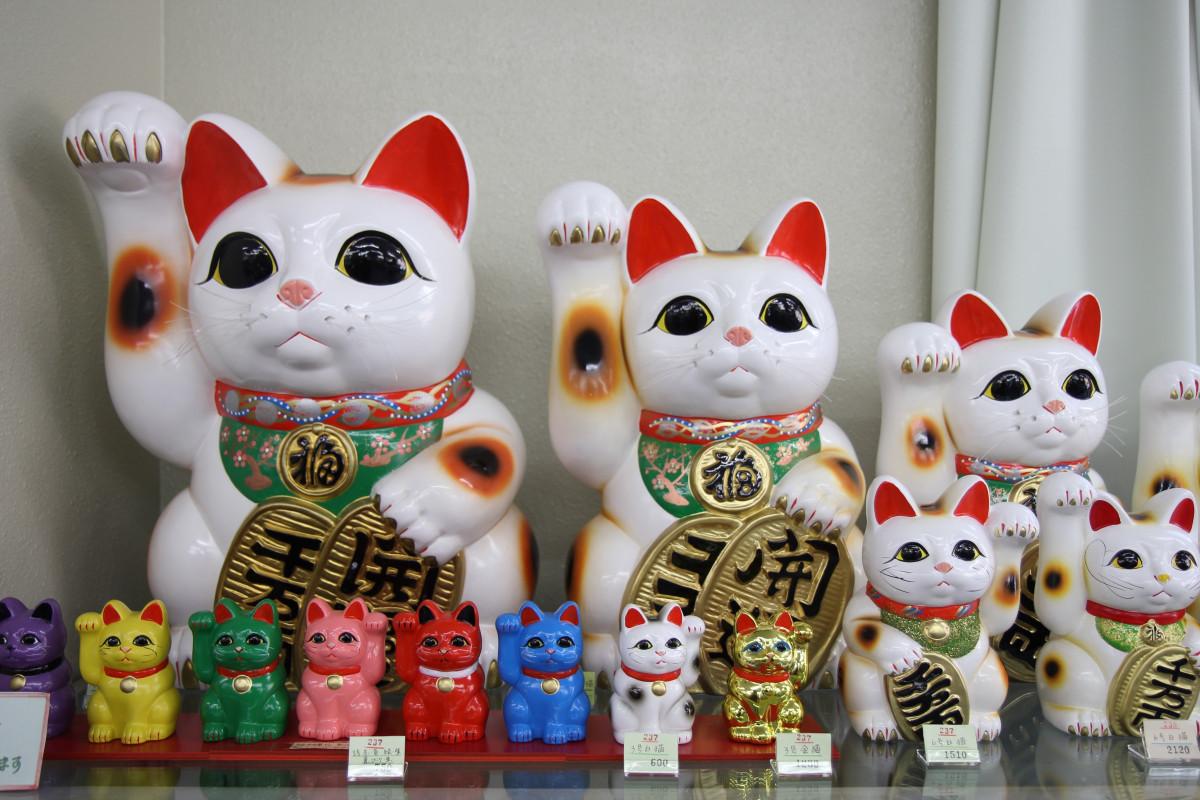 Kostenlose foto : Blume, Katze, Farbe, Japan, Spielzeug, Stillleben ...