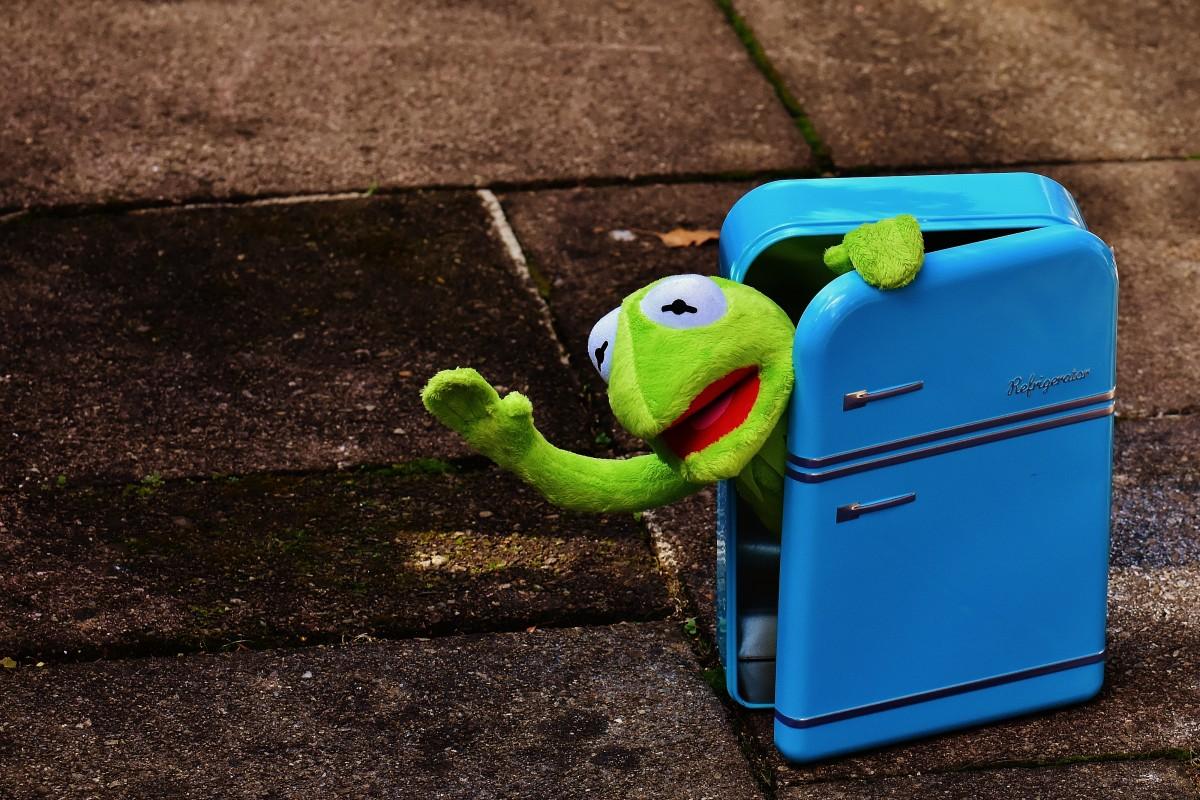 Retro Kühlschrank Gelb : Kostenlose foto gras spielen retro welle grün farbe blau