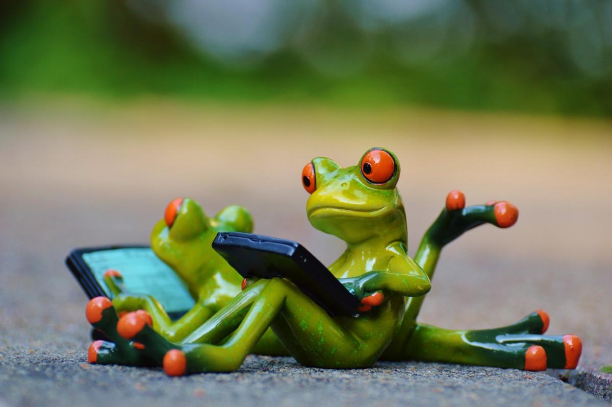 Веселые картинки про лягушек