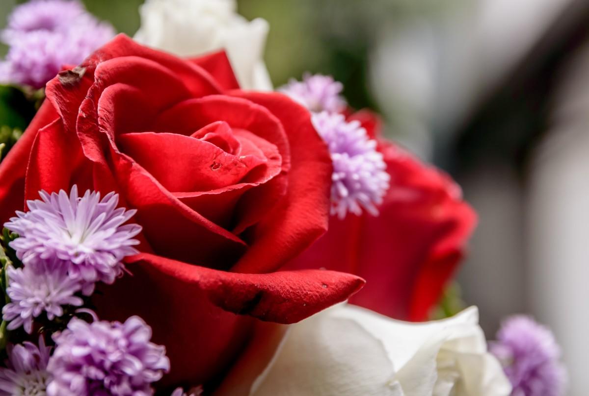 Фото цветов букетов роз крупный план