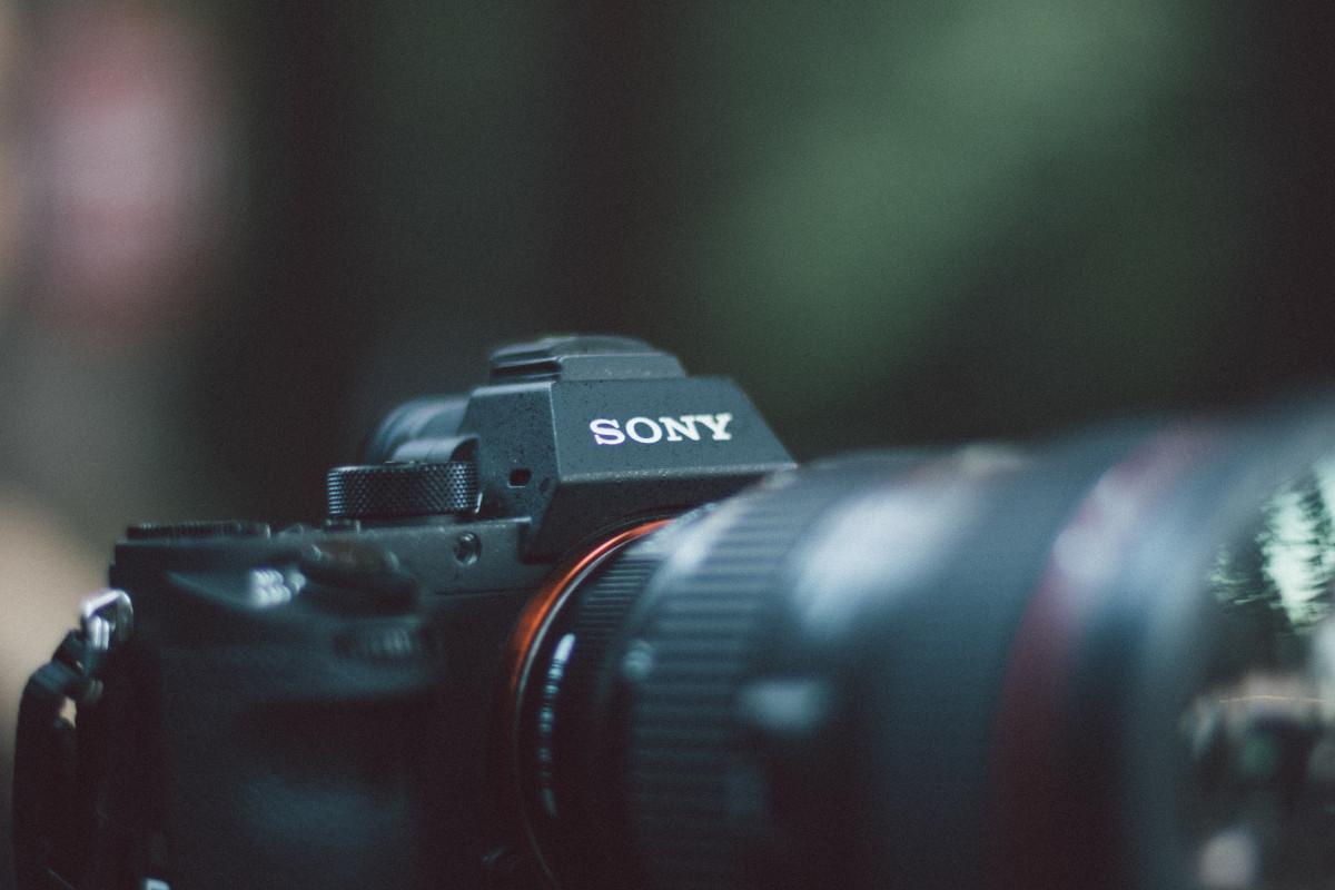 антивандальные стенды как понять слово зеркальный фотоаппарат часто переживал
