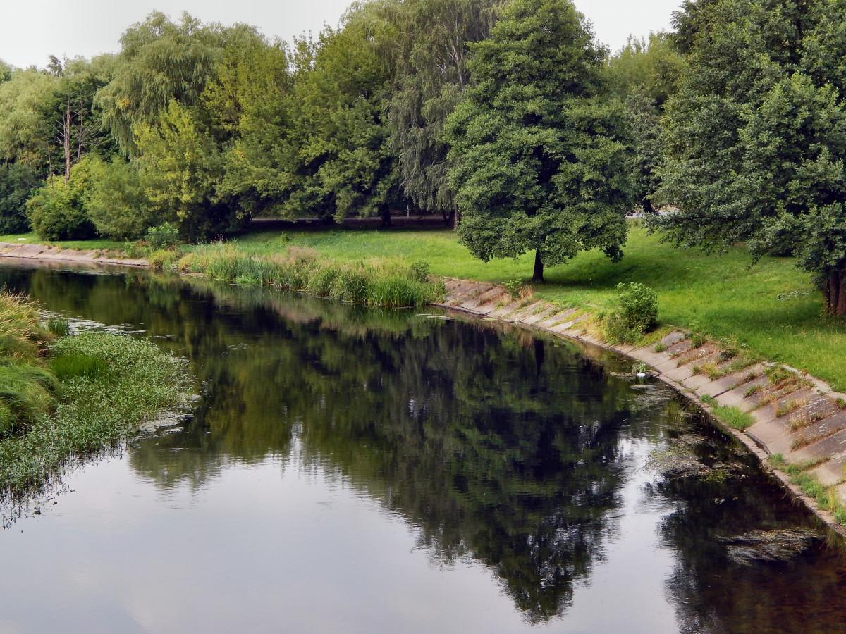 images gratuites paysage arbre eau lac rivi re canal courant r flexion r servoir. Black Bedroom Furniture Sets. Home Design Ideas