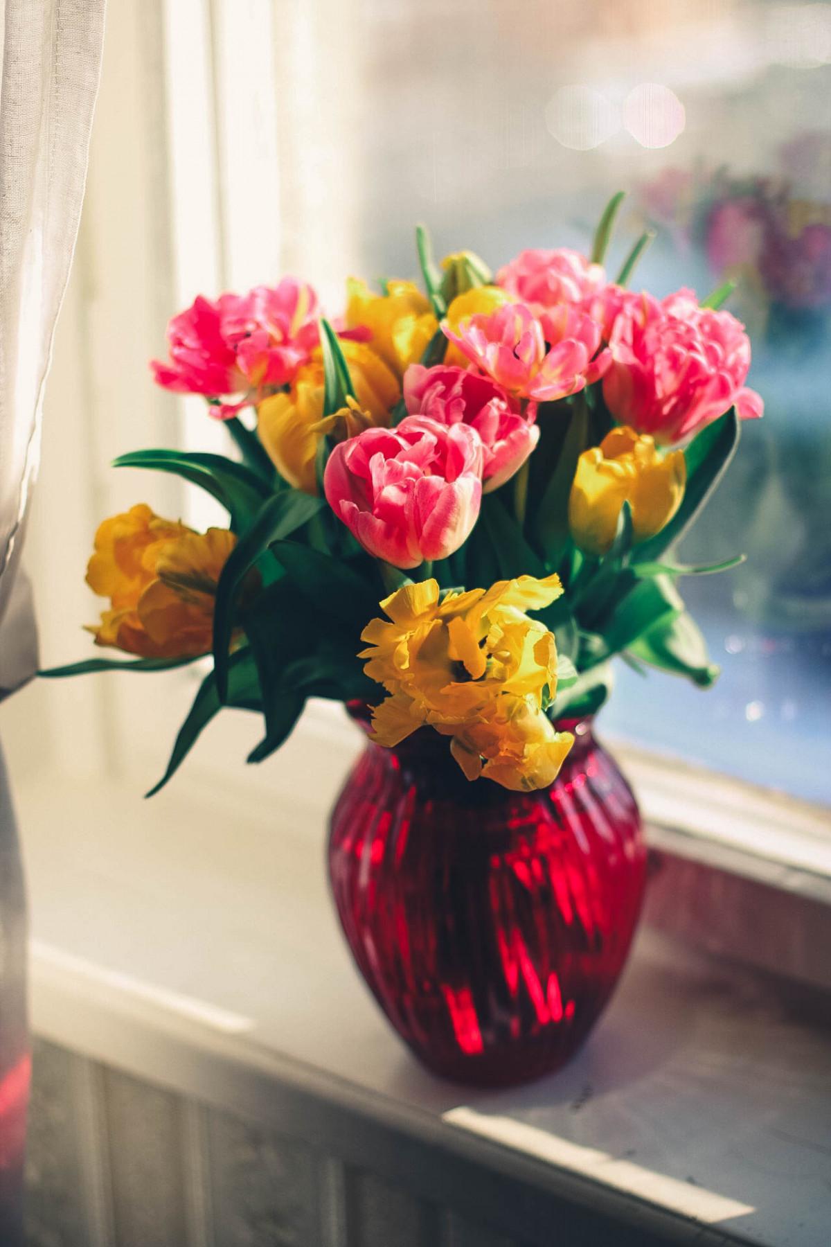 menanam bunga daun bunga berkembang buket vas